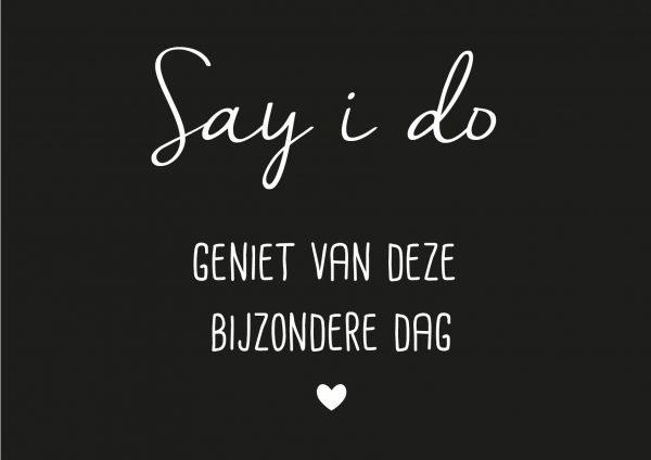 Say i do..